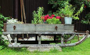 Luge en bois vieilli supportant des bacs à fleurs