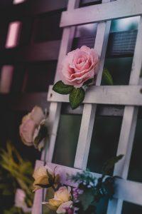 Panneau treillissé en bois vieilli décoré de fleur